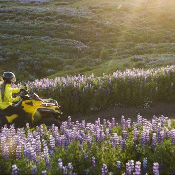 parcourir le terrain islandais en quad