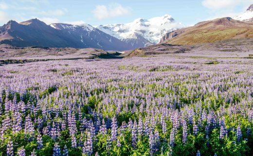 Vatnajökull dans le Sud de l'Islande