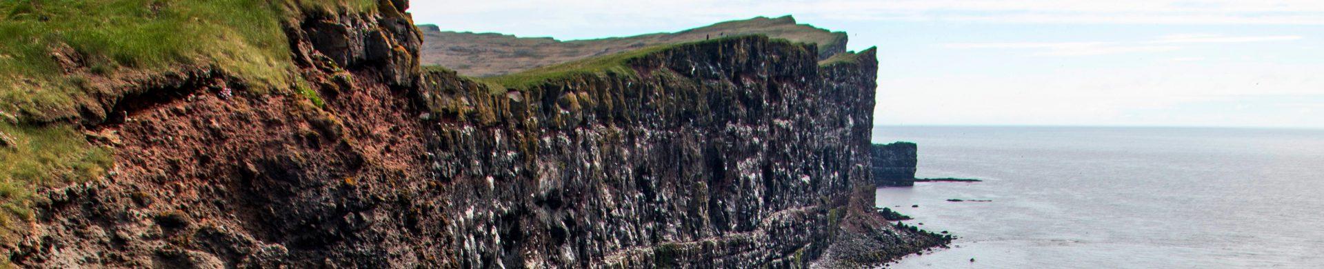 Látrabjarg, la falaise aux oiseaux dans l'Ouest de l'Islande