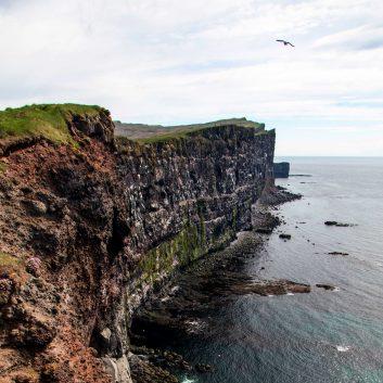 latrabjarg ouest islande